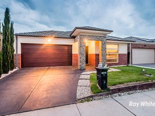 EXQUISITE FAMILY HOME - Clyde North