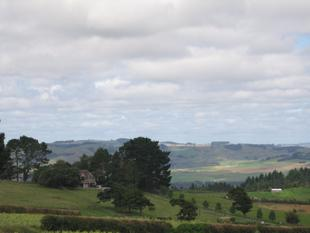 Prime Land With Manor Home - Pukekohe
