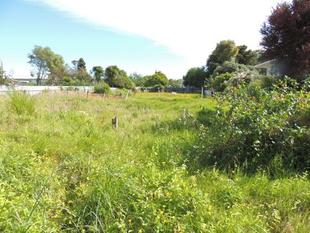 LAND ALWAYS A GOOD INVESTMENT - Wairoa