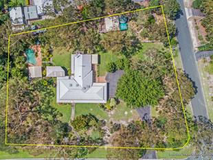 Dream Family Acreage for under a Million!!!! - Capalaba