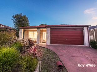 AFFORDABLE HUNT CLUB BUYING WITH A MULTITUDE OF USES! - Cranbourne East