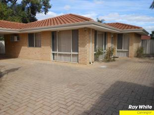 """PRICE REDUCTION"" REFURBISHED VILLA WITH 2 LIVING AREAS AND ALL THE TRIMMINGS - Cannington"