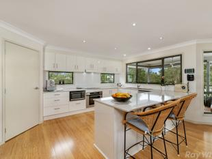 NEAR NEW CONTEMPORY TREE-TOP HOME - Everton Hills