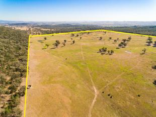 551.5Acres* of Creek Loam, to Medium Grazing Country, Rising to Timber - Cowra