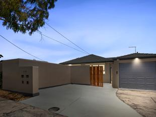 A Fresh, Renovated Gem in an All-Star Location - Glen Waverley