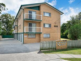 Fresh Features & Ideal Location! - Coorparoo