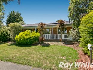 Corner Position with Lots of Space & Cosy Charm - Ferntree Gully