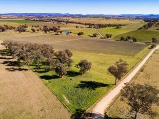 Spring Ridge 19.55ha  Productive Property with Picturesque Outlook - Cowra