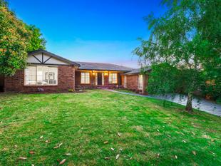 Move Your Family in & Enjoy Renovated Style - Kilsyth