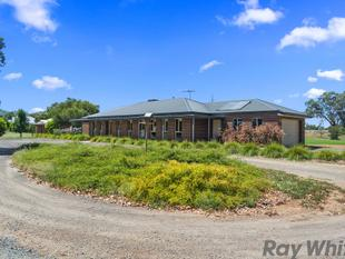 RURAL LIFESTYLE - 1.25 ACRE IN MULWALA - Mulwala