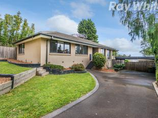 A PRISTINE 3 BEDROOM HOME WITH SELF CONTAINED UNIT - Ferntree Gully