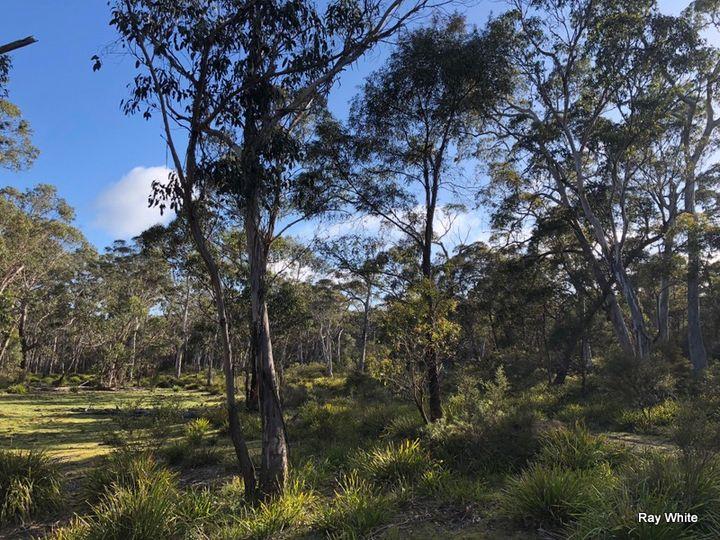 98 Kirriford Road, Nerriga, NSW