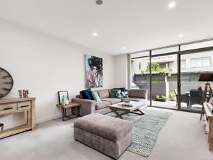 LUXURY 'AS NEW' APARTMENT FOOTSTEPS FROM TRANQUIL BURNS BAY - Lane Cove