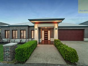 Designer Home With Captivating Spaces on 576m2 - Craigieburn
