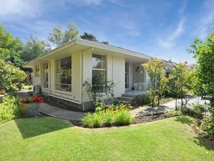Owners Have Purchased... - Papanui