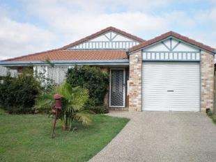 * A MUST SEE HOME - Acacia Ridge