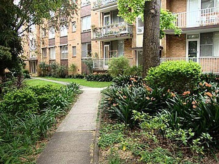 24/44 Ewart Street, Marrickville, NSW