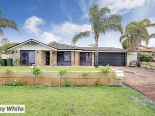 ALEX DABAG PRESENTS.. LARGE FAMILY HOME, BEAUTIFULLY PRESENTED! - Ballajura