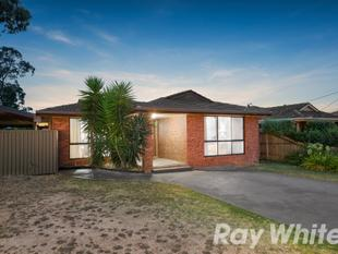 Poolside Living - Wantirna