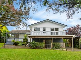 Large home, large section, plenty of options - Botany Downs