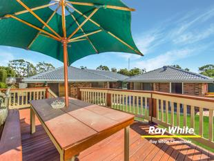 Spacious Lowset in Pristine Condition - Backing Onto Parklands - Chermside West