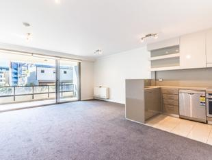 Large modern 2 bedroom apartment - Erskineville