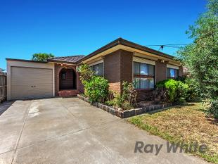 LARGE 4 BEDROOM HOME - Albanvale