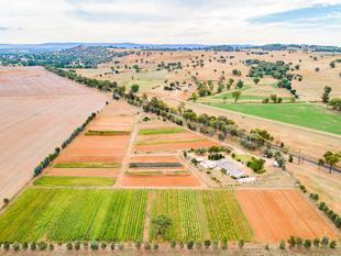 Certified Organic Vegetable Farm  Run Your Own Business - Cowra