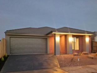 Stunning New Family Entertainer in Habitat - Tarneit