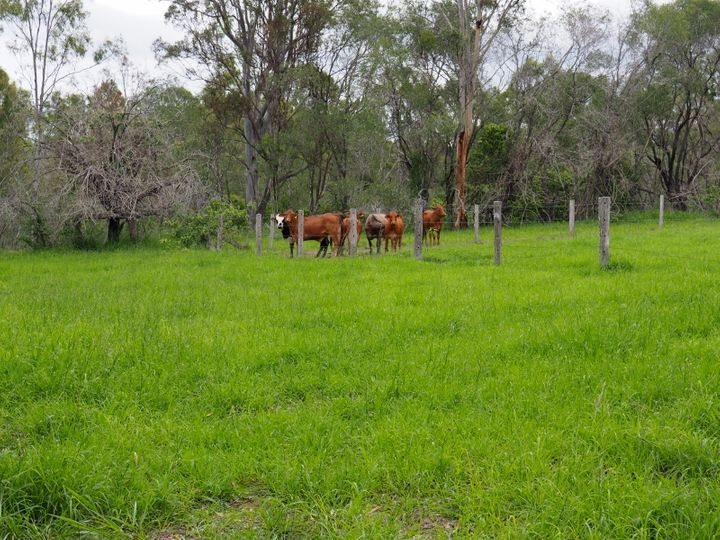 River Road, Ferney, QLD