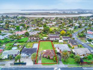 AUCTION SUNDAY 26 NOVEMBER ON SITE AT 11.30AM! - Te Atatu South