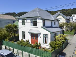 Modern and great income, in Mount Vic! - Mount Victoria