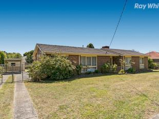 Cheerful, Spacious and Convenient - Wantirna