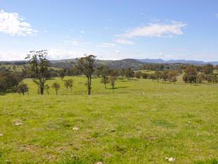 KINGSTON PARK - Tenterfield