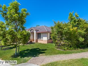 Lowset Brick Home on 400m2 Block In Riverwood - Murrumba Downs