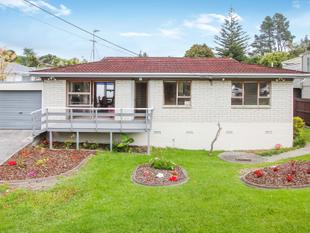 Last Chance to View - Auction Thursday - Te Atatu South