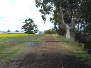 Lemana - ex egg laying farm - Tambellup