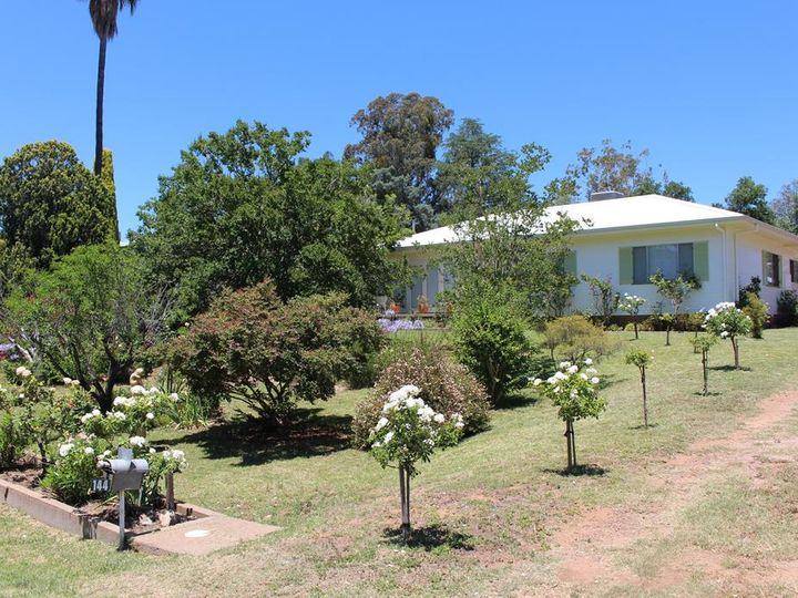 144 Maitland Street, Bingara, NSW