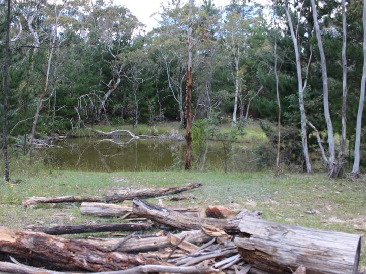 Mount Lambie, NSW