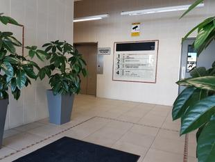 Immaculate Professional CBD Suites - Whangarei Central