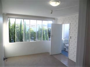 Big 1 Bedroom Apartment. Walk to Kings Cross, Train Station,  & City. Partly Furnished WiFi - Potts Point