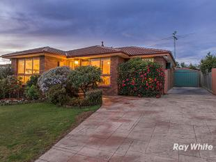 A SINGLE OWNER 4 BEDROOM FAMILY HOME IN STUNNING CONDITION! - Narre Warren
