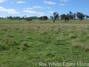 BLAYNEY  HIGHLY PRODUCTIVE GRAZING PROPERTY - Blayney