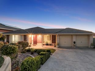 Family Home with Established Gardens - Walkley Heights