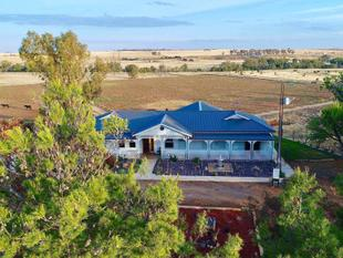 King of the Castle, Elite equestrian Property with acres to spare. - Mallala