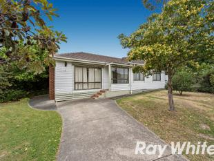 Classic & Comfortable Beauty! - Ferntree Gully