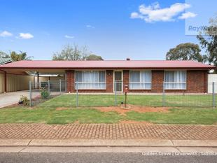 Fantastic First Home or Ideal Investment - NOW UNDER CONTRACT! - Andrews Farm