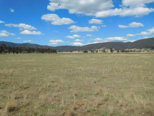 50 ACRES APPROX OF POTENTIAL ON THE EDGE OF TOWN - Scone