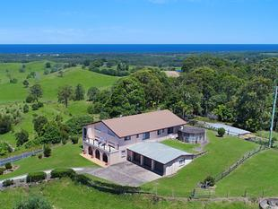 SENSATIONAL  OCEAN  VIEWS - Cudgera Creek