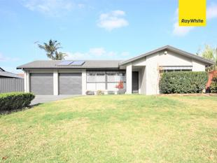 Beautifully renovated family home - Glenfield